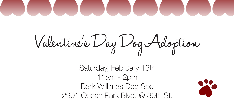 Valentine's Day Adoption event
